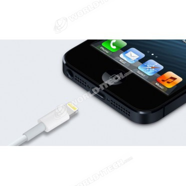 Cable USB Lightning Origine iPhone iPad