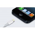 Cable USB Lightning Origine iPhone iPad 0